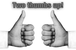 PitLarson Review 2 thumbs up